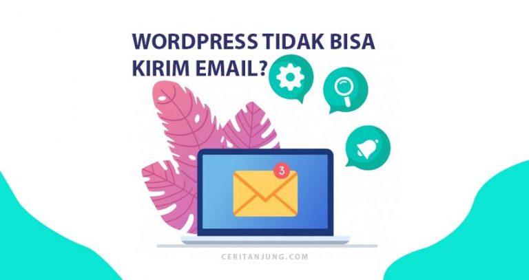 WordPress Tidak Bisa Mengirim Email Gunakan Plugin SMTP